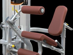 DualMotion Impulse Leg extension&Leg curl-